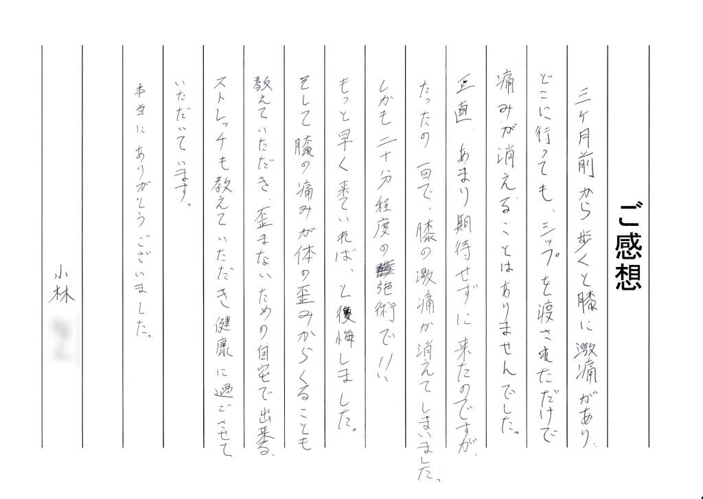 IMG_20130930_0019